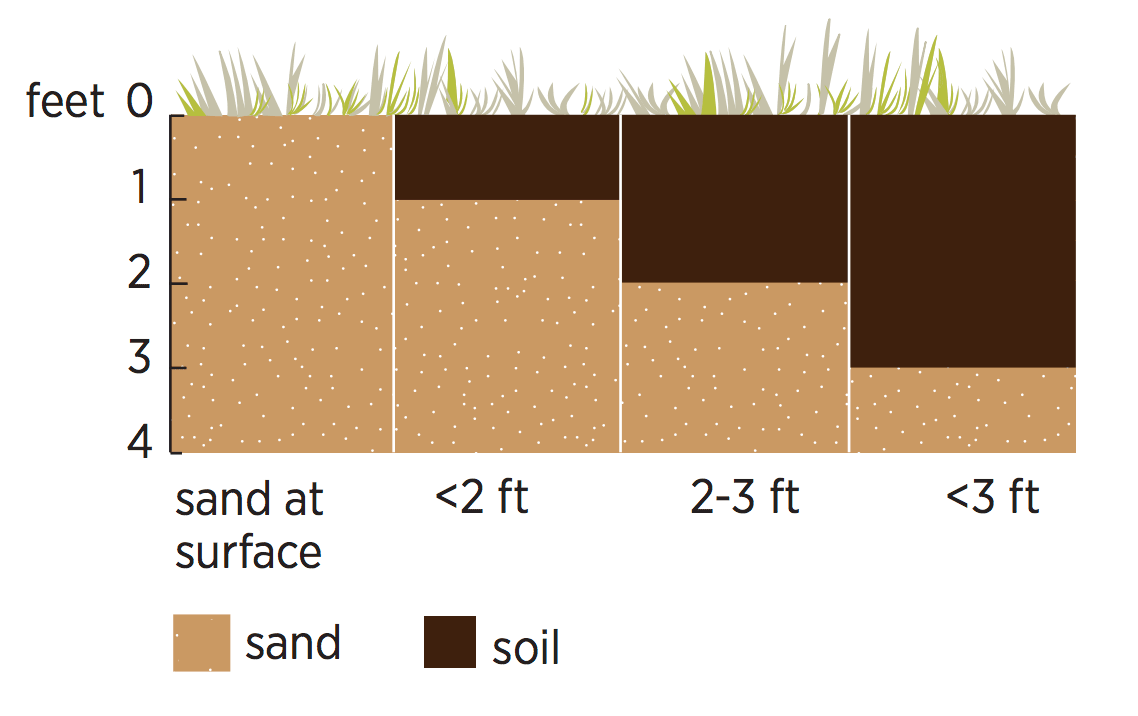 Soil to sand depth